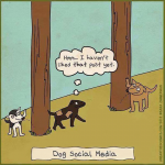 Social Media – The good, the bad, the pros and the cons….