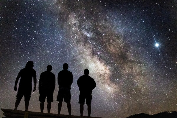 How We Behave is Written in The Stars
